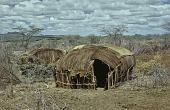 view Samburu houses : Barseloi, Kenya digital asset: Samburu houses : Barseloi, Kenya