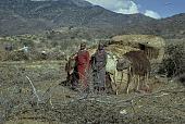 view Samburu [women] : Wamba, Kenya digital asset: Samburu [women] : Wamba, Kenya