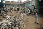 view Taxidermy shop, near Nairobi, Kenya digital asset: Taxidermy shop, near Nairobi, Kenya