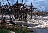 view Fish-trap construction in the cataracts, near Kisangani, Congo (Democratic Republic) digital asset: Fish-trap construction in the cataracts, near Kisangani, Congo (Democratic Republic)