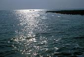 view Lake Albert, Uganda digital asset: Albert, Lake, Uganda