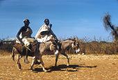 view Hausa men riding donkeys, near Sokoto, Nigeria digital asset: Hausa men riding donkeys, near Sokoto, Nigeria