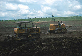 view Cane sugar plantation owned by the Compagnie Sucrière, Kwilu-Ngongo, near Mbanza-Ngungu, Congo (Democratic Republic) digital asset: Cane sugar plantation owned by the Compagnie Sucrière, Kwilu-Ngongo, near Mbanza-Ngungu, Congo (Democratic Republic)
