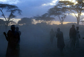 view Pastoral Maasai with cattle, Olengaitoli village, Kenya digital asset: Pastoral Maasai with cattle, Olengaitoli village, Kenya