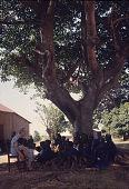 view Hazel Ryckman, a Baptist missionary teacher, reads to children of the Rukuba people, Zagun Village, west of Jos, Nigeria digital asset: Hazel Ryckman, a Baptist missionary teacher, reads to children of the Rukuba people, Zagun Village, west of Jos, Nigeria