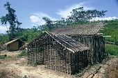 view The construction of a house, west of Kingulube village, Congo (Democratic Republic) digital asset: The construction of a house, west of Kingulube village, Congo (Democratic Republic)