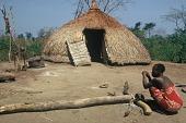 view Thatched dome dwelling of a Zande family unit, Gangala-Na-Bodio, Congo (Democratic Republic) digital asset: Thatched dome dwelling of a Zande family unit, Gangala-Na-Bodio, Congo (Democratic Republic)