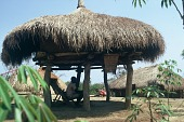 view Thatched roof shelter of a Zande family, Gangala-Na-Bodio, Congo (Democratic Republic) digital asset: Thatched roof shelter of a Zande family, Gangala-Na-Bodio, Congo (Democratic Republic)