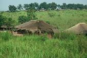 view Dispersed settlements among the Zande people, Gangala-Na-Bodio, Congo (Democratic Republic) digital asset: Dispersed settlements among the Zande people, Gangala-Na-Bodio, Congo (Democratic Republic)