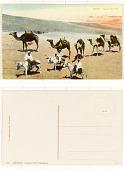view Egypt Camel-Caravan digital asset: Egypt Camel-Caravan