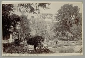 view View of Chapultepec Castle from Gardens n.d digital asset number 1