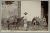 view Man with Two Loaded Burros n.d digital asset number 1