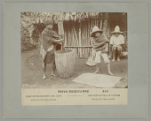 view Mexican Man with Wood Mortar and Pestle and Boy with Bowl and Sifter, Demonstrating Decortication of Coffee n.d digital asset number 1