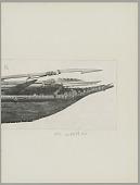 view Yahgan canoe, Paddles, and Harpoons digital asset: Yahgan canoe, Paddles, and Harpoons