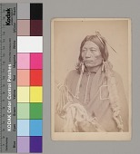 view Portrait of Chief Pacer with Fur-Wrapped Braids, Wearing Blanket and Ornaments and Holding Bow in Fur Case and Fur Quiver 1867-75 digital asset number 1