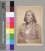 view Portrait of Chief Woman's Heart in Native Dress and Wearing Peace Medal and Hairpipe Earrings 1867-75 digital asset number 1