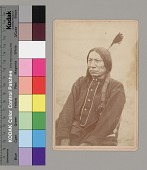 view Portrait of Chief Makhpiya-Luta (Red Cloud) with Wrapped Braids and Feather in Hair and Wearing Blanket 1867 digital asset number 1