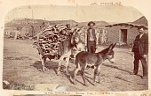 view Two Non-Native Men with Burro Carrying Firewood, Outside Brick Buildings; Young Burro Nearby n.d digital asset number 1