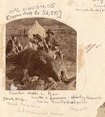 view (L-R) Bloody Knife, Custer's Favorite Indian Scout, General George Armstrong Custer, Private Noonan, and Captain William Ludlow, All with Rifles Beside Bear Shot by Custer; Tent In Background 1874 digital asset number 1