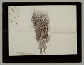 view Woman in Native Dress, Carrying Corn Fodder on Back n.d digital asset number 1