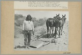 view Cushong (Fat Hen) in Partial Native Dress with Two Horses Pulling Grading Tool? 14 JUN 1906 digital asset number 1