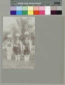 view Three women with water jars on heads near palm trees Copyright 12 FEB 1897 digital asset number 1
