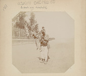 view Man in Costume with Stringed Musical Instrument in Road Outside Walled Landscaped Gardens digital asset: Man in Costume with Stringed Musical Instrument in Road Outside Walled Landscaped Gardens