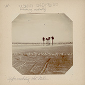 view View of Cultivated Field, Palm Trees, and River in Distance 1904 digital asset number 1