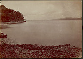 view View of Harbor, Looking South 1870 digital asset number 1