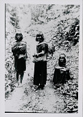 view Three Amahuaca Men Wearing Face Paint and in Costume, Carrying Burden Bags on Jungle Path JUL 1910 digital asset number 1