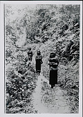 view Three Amahuaca Men with Burden Bags on Jungle Path July 1910 digital asset number 1