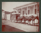 view Three Whites in Mule Driven Medicine Wagon with Red Cross Outside Wood Frame Building 1901 digital asset number 1
