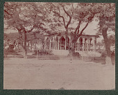 view Main Plaza and Music Pavillion in Ponce 1901 digital asset number 1