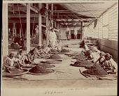 view Assamese women sorting tea, undated digital asset number 1
