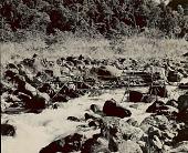 view Bamboo Suspension Bridge Over Stream 1954 digital asset number 1