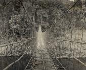 view Vine and Cane Suspension Bridge to Bogu 1954 digital asset number 1