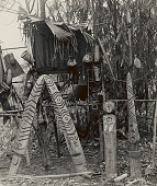 view Warrior's Grave Decorated with Symbolic Painted Wood Carvings and Effigies; his Possessions Hanging Beside his Handwoven Black and Red Shawl Protected by Palm Leaves 1954 digital asset number 1