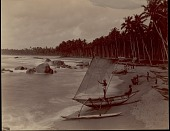view Sinhalese men with outrigger canoes on beach, undated digital asset number 1