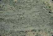 view Petroglyphs 1954 digital asset number 1