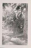 view Man in Costume in Jungle Clearing n.d digital asset number 1