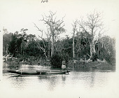 view Man and Young Woman Wearing Rafia Skirts and Ornaments In Outrigger Canoe on River digital asset: Man and Young Woman Wearing Rafia Skirts and Ornaments In Outrigger Canoe on River