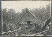 view View of Pole and Thatch House and Raised Walkway n.d digital asset number 1