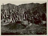 view Group of Men Making Large Storage Baskets; Non-Native Man Nearby 03 JUN 1922 digital asset number 1