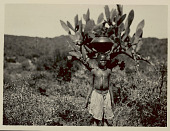 view Girl in Costume with Jar Atop Head; Cactus? Plant and Shrubs 1922 digital asset number 1
