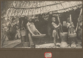 view Zalina Winnowing Rice with Basket; Two Girls Pounding Rice In Mortars with Pestles; All in Costume Outside Pole and Thatch House NOV 1924 digital asset number 1