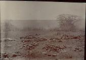 view Piles of Stones in Field n.d digital asset number 1