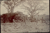 view View of Masonry Ruins and Stone Grave? Markers Atop Mound n.d digital asset number 1
