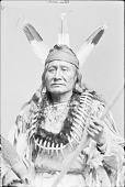 view Arikara man, Rushing Bear in Native Dress with Peace Medal and Bear Claw Necklace 1880 digital asset number 1