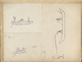 view D10: Drawing from Pictograph of Two Figures in Canoe; One Shooting at Flying Fish digital asset: Drawing from Pictograph of Two Figures in Canoe; One Shooting at Flying Fish Drawing