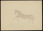 view Brown Horse Running Across Grass Drawing digital asset: Brown Horse Running Across Grass Drawing